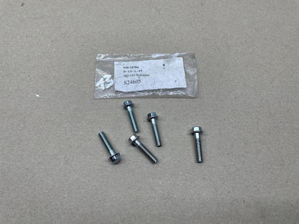 Pegasus SKY 125 R125X Corona 125 - 5x Schraube Ölpumpe S24605 TGB Bolt (40-21)